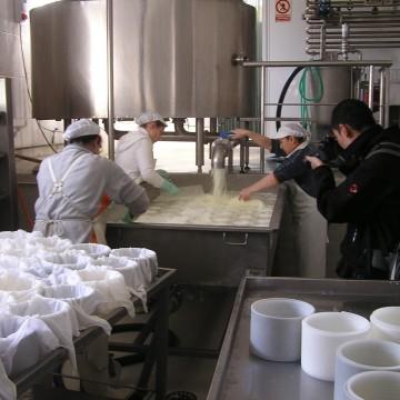 Elaborando queso
