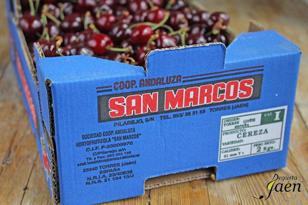 Magret-de-pato-con-cerezas-Degusta-Jaén-(4)