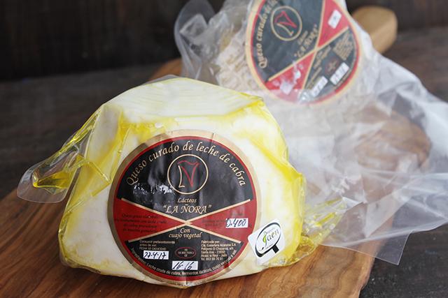 Lasaña de calabacin con pavo y queso Degusta Jaen (2)