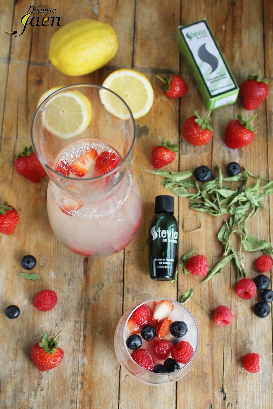 Limonada con frutos rojos y Stevia Degusta Jaén (2)