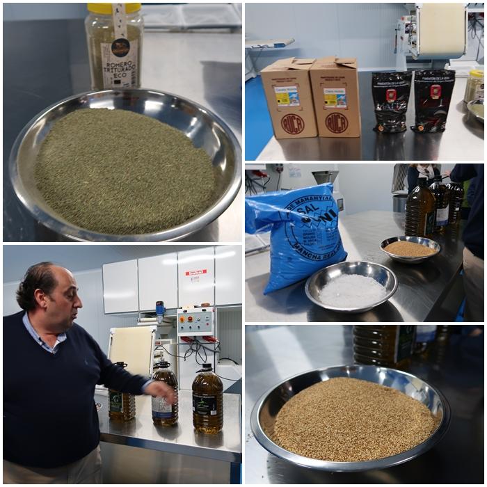 Pan de olivo 2