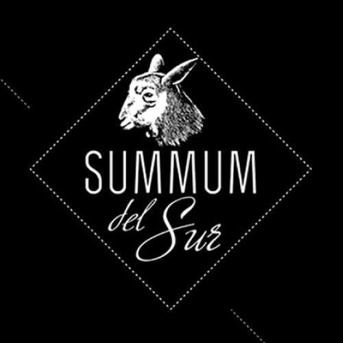 logo_summumdelsur 500x500