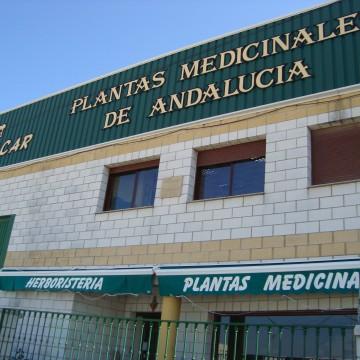Instalaciones industriales de Plantacar.