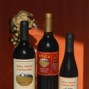 Los tintos de Bodegas Viñas Tintas Capellanía.